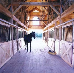 Horse_Barn5